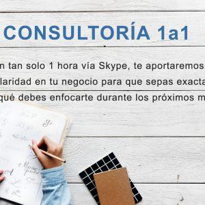 Consultoría 1a1